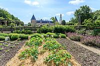 France, Loiret (45), Chilleurs-aux-Bois, château de Chamerolles et les jardins renaissance, ici un des deux carrés consacré au potager, plantation de courgettes