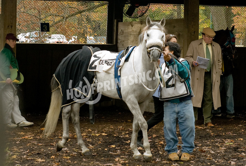 Tiki Barber before The Delaware Park Claiming Stakes on 10/31/11