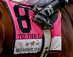 Tiz the Law #8, ridden by jockey Manny Franco, during the the 152nd running of Belmont Stakes at Belmont race track in Elmont, New York, USA, 20 June 2020. The Belmont is being run without fans due to coronavirus SARS-CoV-2 which causes the Covid-19 disease and while it has always been the third leg of the Triple Crown, due to Covid-19 it is, instead the first leg in 2020.