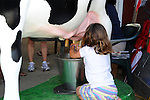 Young girl milking cow at Cheshire Fair in Swanzey, New Hampshire USA