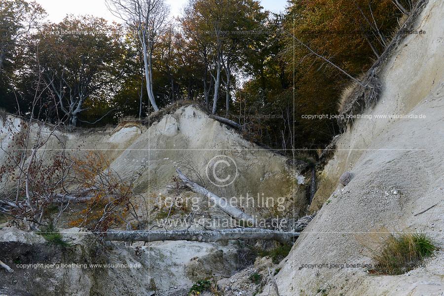 GERMANY, Ruegen, Nationalpark Jasmund / DEUTSCHLAND, Rügen, Nationalpark Jasmund, Kreideküste und Buchenwald im Herbst