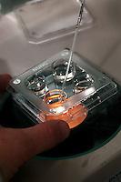 Fecondazione assistita, Centro Cantonale Fertilità Locarno, Svizzera. Sono centinaia le coppie italiane che ogni anno si rivolgono al centro del dottor Jùrg Stamm per risolvere i problemi di sterilità. Are 13,000 Italian couples every year abroad a solution to have a son.<br /> In Locarno, Switzerland, there are hundreds of Italian couples who come each year to the Cantonal Fertility Centre, directed by Dr. Jürg Stamm, to solve their problems of infertility
