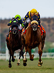 United with Flavien Prat aboard win the Eddie Read Stakes eat Del Mar Thoroughbred Club, in Del Mar Ca, July 26, 2020. (Photo: Alex Evers)