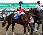 September 14, 2019 : Scabbard (#3, Corey Lanerie) in the post parade of the Iroquois Stakes at Churchill Downs, Louisville, Kentucky. He finished second.  Trainer Eddie Kenneally, owner Joseph W. Sutton. By More Than Ready x Cowgirl Mally (Gone West).  Mary M. Meek/ESW/CSM