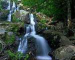 Shenandoah National Park, VA:  Dark Hollows Falls a 70 foot series of cascades flows over greenstone to the Rose River located near Big Meadows