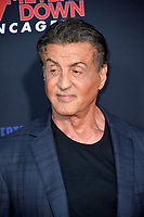 "LOS ANGELES, USA. August 14, 2019: Sylvester Stallone at the premiere of ""47 Meters Down: Uncaged"" at the Regency Village Theatre.<br /> Picture: Paul Smith/Featureflash"