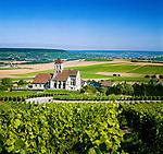France, Département Marne, Champagne, Cuis: wine village near Épernay | Frankreich, Département Marne, Champagne, Cuis: Weindorf bei Épernay