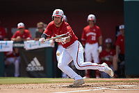 Shane Shepard (16) of the North Carolina State Wolfpack squares to bunt against the Army Black Knights at Doak Field at Dail Park on June 3, 2018 in Raleigh, North Carolina. The Wolfpack defeated the Black Knights 11-1. (Brian Westerholt/Four Seam Images)