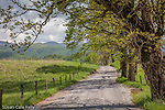 Hyatt Lane in Cades Cove, Great Smoky Mountains National Park, TN, USA