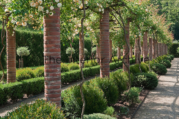 The brick pergola is smothered with Rosa 'Claire Jacquier' and underplanted with box hedging and neatly clipped shrubs