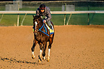 April 26, 2021: Super Stock, trained by trainer Steve Asmussen, exercises in preparation for the Kentucky Derby at Churchill Downs on April 26, 2021 in Louisville, Kentucky. Scott Serio/Eclipse Sportswire/CSM