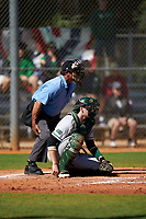 Dartmouth Big Green catcher Ben Rice (9) during a game against the Omaha Mavericks on February 23, 2020 at North Charlotte Regional Park in Port Charlotte, Florida.  Dartmouth defeated Omaha 8-1.  (Mike Janes/Four Seam Images)