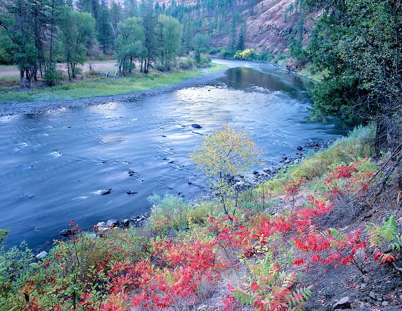 Grande Ronde River with red fall colored Sumac. Near Troy, Oregon