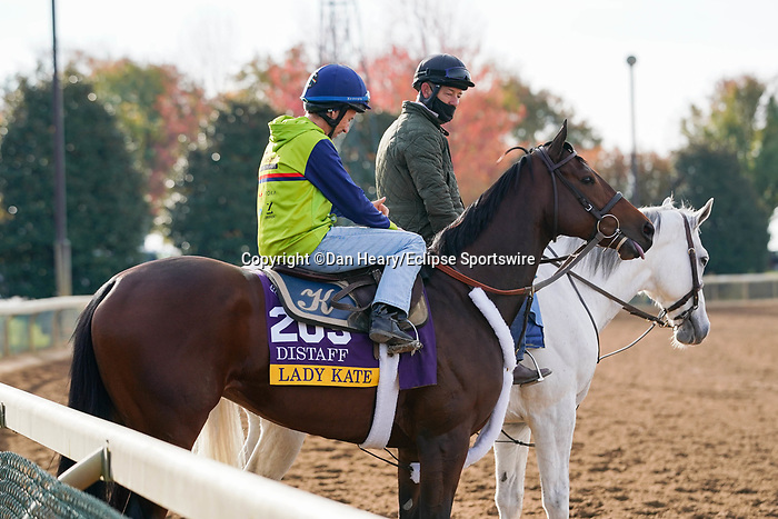 November 5, 2020: Lady Kate, trained by trainer Eddie Kenneally, exercises in preparation for the Breeders' Cup Distaff at Keeneland Racetrack in Lexington, Kentucky on November 5, 2020. Dan Heary/Eclipse Sportswire/Breeders Cup/CSM