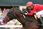 LEXINGTON, KY - October 7, 2017.  #6 Rubus and jockey Joseph Rocco Jr. win the 3rd race for Maiden 2 year olds $65,000 for owner Rigney Racing and trainer Philip Bauer at Keeneland Race Course.   Lexington, Kentucky. (Photo by Candice Chavez/Eclipse Sportswire/Getty Images)