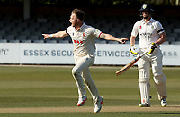 Sam Cook of Essex celebrates taking the wicket of Will Young during Essex CCC vs Durham CCC, LV Insurance County Championship Group 1 Cricket at The Cloudfm County Ground on 17th April 2021