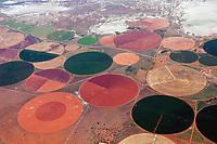 Felder im Kreis nahe der Wüste Karoo: AFRIKA, SUEDAFRIKA, 21.12.2007: Felder im Kreis nahe der Wüste Karoo