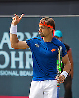 Den Bosch, Netherlands, 10 June, 2016, Tennis, Ricoh Open, David Ferrer (ESP)  challenges a line call<br /> Photo: Henk Koster/tennisimages.com