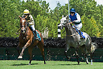 11 July 2010: Barnstorming with Danielle Hodsdon (1st), Music Tune and Carl Rafter in the Maiden Claiming Hurdle race at Colonial Downs in New Kent, Va. Barnstorming is owned and trained by Jonathan E. Sheppard.