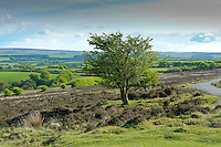 View at Wheddon Cross, Somerset. Exmoor.