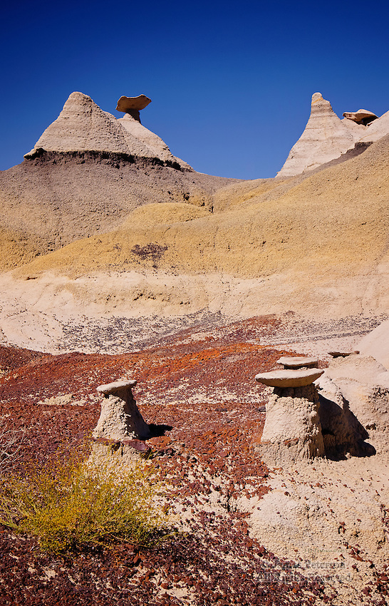 Little Sorcerers, Bisti Badlands Wilderness, New Mexico.  Available in sizes up to 30x45 inches.