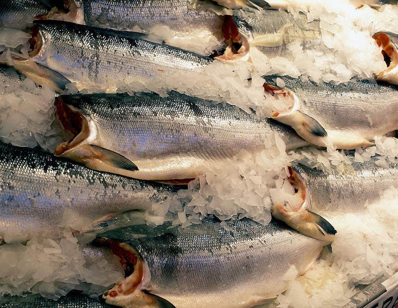 Silver Salmon fish at Pike's Market. Seattle, Washington