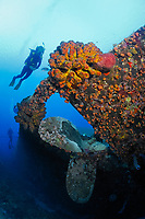 Scuba divers near propellor of ship wreck, artificial reef, Hilma Hooker, Bonaire, Netherlands Antilles, Caribbean, Atlantic