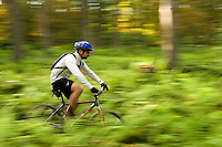 A mountain biker rides through a hardwood forest in Vermont.  The image was panned to create the motion blur.  MR