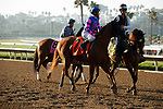DEL MAR, CA  SEPTEMBER 4:  #7 Grace Adler, ridden by Flavien Prat, in the post parade of the TVG Del Mar Debutante (Grade l)  on September 5, 2021 at Del Mar Thoroughbred Club in Del Mar, CA.(Photo by Casey Phillips/Eclipse Sportswire/CSM)