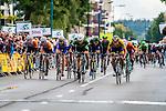 Shane ARCHBOLD, An Post - Chain Reaction, winning the bunch sprint, Arnhem Veenendaal Classic , UCI 1.1, Veenendaal, The Netherlands, 22 August 2014, Photo by Thomas van Bracht / Peloton Photos