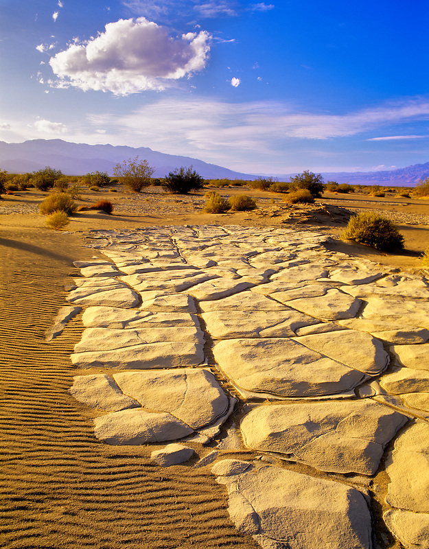 Dried mud patterns in Death Valley National Park, California