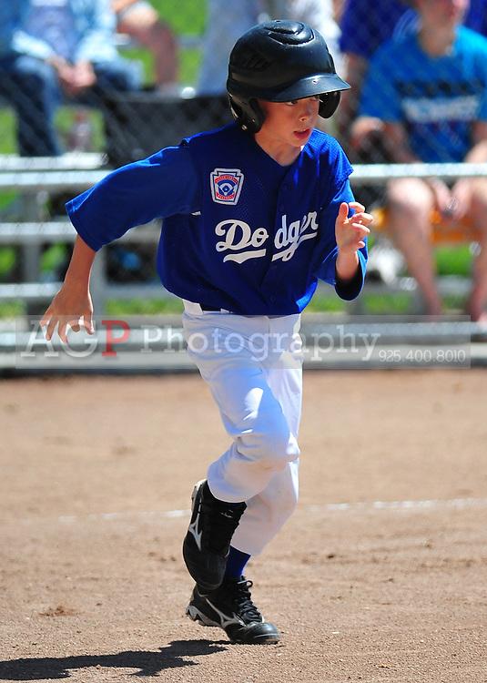 The AAA Dodgers at photo day at the Pleasanton Sports Park April 24, 2010. (Photo by AGP Photography)