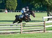 8th Valentine Memorial Timber Novice Stakes - Grand Manan