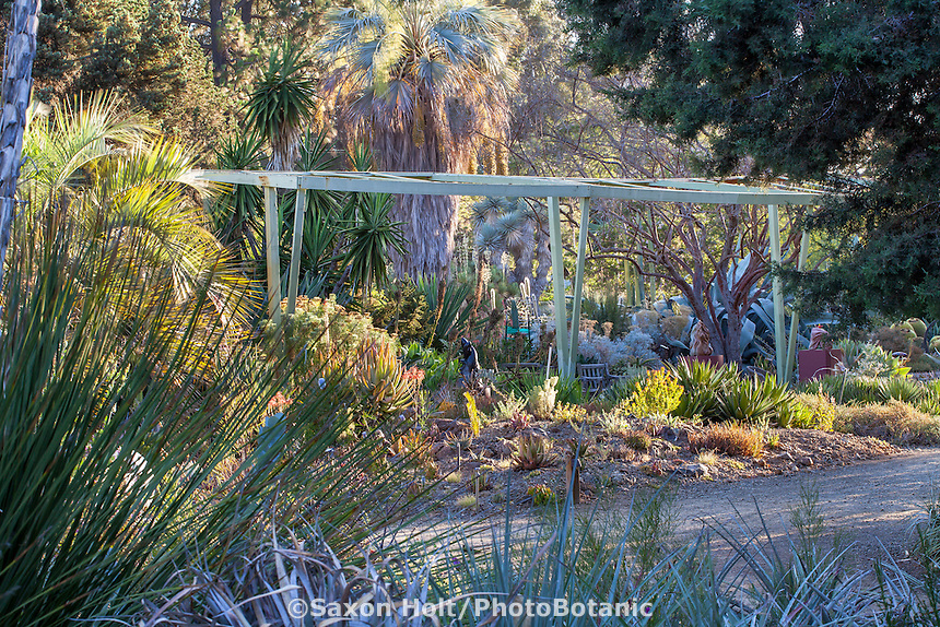 Drought tolerant California succulent garden beds and borders - Bancroft Garden, shade, frost structure, pergola