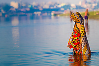Veiled woman standing in sacred Yamuna River for ritual bathing, with her colorful sari reflecting on the water, Mathura Uttar Pradesh, India