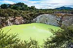 Devil's Bath, Wai-O-Tapu, Rotorua