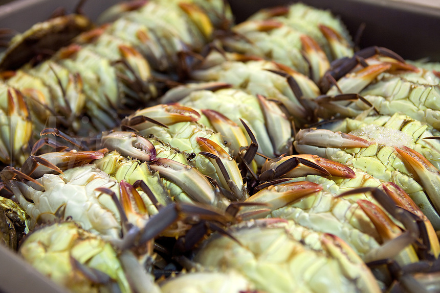 Softshell Blue Crabs