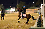 LOUISVILLE, KY -APR 25: Chocolate Martini is not interested in leaving the track after working out for the Kentucky Oaks at Churchill Downs, Louisville, Kentucky. (Photo by Mary M. Meek/Eclipse Sportswire/Getty Images)