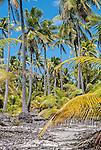 An isolated road on the remote island of Kiritimati in Kiribati.