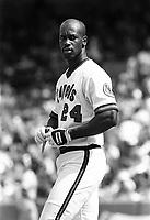 Chili Davis of the California Angels during a 1988 season game at Anaheim Stadium,in Anaheim,California.(Larry Goren/Four Seam Images)