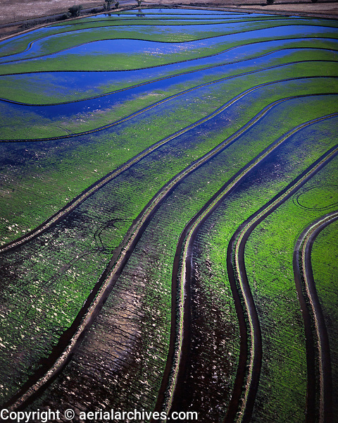 aerial photograph of levees and irrigation in California Central Valley agriculture