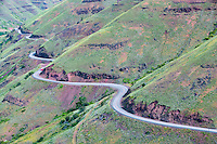 Enterprise/Lewiston Highway 129. with spring growth. Oregon