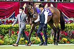 FUCHU,JAPAN-JUN 6: Gran Alegria,the 2020 JRA Awards winner for sprint and mile gategories, walks at the padock before the Yasuda Kinen at Tokyo Racecourse on June 6,2021 in Fuchu,Tokyo,Japan. Kaz Ishida/Eclipse Sportswire/CSM