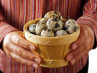 Fresh  Organic quails Eggs