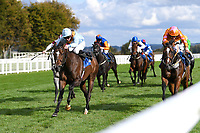 Winner of The Byerley Stud Handicap Stakes Ice Station Zebra (blue) ridden by Rob Hornby and trained by Ralph Beckett  during Horse Racing at Salisbury Racecourse on 1st October 2020