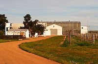 The winery building and the vineyard. Vinedos y Bodega Filgueira Winery, Cuchilla Verde, Canelones, Montevideo, Uruguay, South America