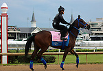 LOUISVILLE, KY - MAY 04:  Cathryn Sophia (Street Boss x Sheave, by Mineshaft) jogs on the track at Churchill Downs with exercise rider Jerry Ortega in preparation for the Kentucky Oaks. Owner Cash Is King LLC, trainer John C. Servis. (Photo by Mary M. Meek/Eclipse Sportswire/Getty Images)