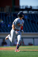 Surprise Saguaros catcher Andrew Knizner (96), of the St. Louis Cardinals organization, jogs around the bases after hitting his first home run, of the game against the Mesa Solar Sox on October 20, 2017 at Sloan Park in Mesa, Arizona. The Solar Sox walked-off the Saguaros 7-6.  (Zachary Lucy/Four Seam Images)
