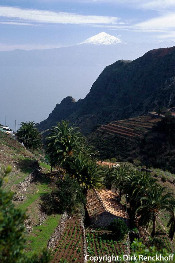 Spanien, Kanarische Inseln, Gomera, Terrassenfelder  bei Las Rosas