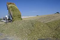 CROATIA, Slavonia, biogas plant, maize substrate for fermentation and power generation / KROATIEN, Slawonien, Biogasanlage der Firma Agro PMD d.o.o. in Medinci bei Slatina, Mais Substrat zur Vergaerung und Stromerzeugung
